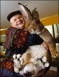 Don't own the rights to the pic, but man I'd sure like to own that bunny.