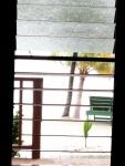 View thru front door - suite 37 at Roberts Grove