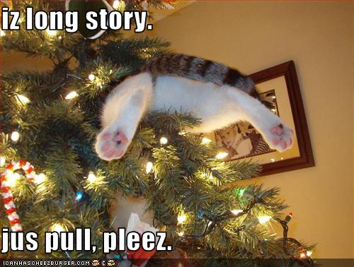 funny-christmas-cats-1