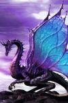 Onyx Butterfly